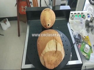 New design CO2 laser marking machine with coconuts marking system