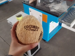 Coconut laser printing samples by co2 laser marking machine
