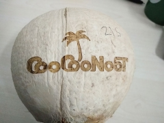 Coconut engraving by 30w Synrad co2 laser marking machine